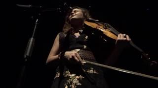 The Avett Brothers (Tania Elizabeth) Solo at Austin City Limits 6/19/16