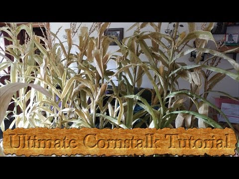Ultimate Fake Cornstalk Tutorial!!