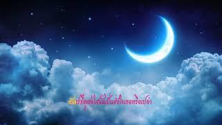 เพลงคืนที่ดาวเต็มฟ้า By Antika Kampitoon