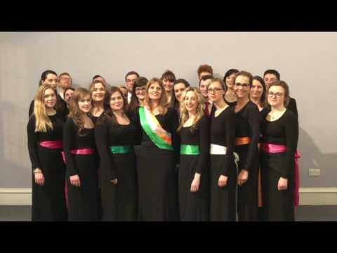 New Dublin Voices WCSM 2017
