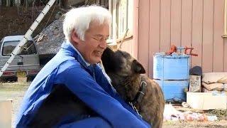 مراقبت از حیوانات خانگی، انگیزه مرد ژاپنی برای بازگشت به فوکوشیما