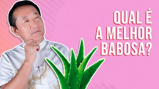 Aloe Vera: Aloe  arborescens ou Aloe barbadensis?