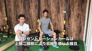 コンセントレーションカールの行い方(腕トレーニング) thumbnail