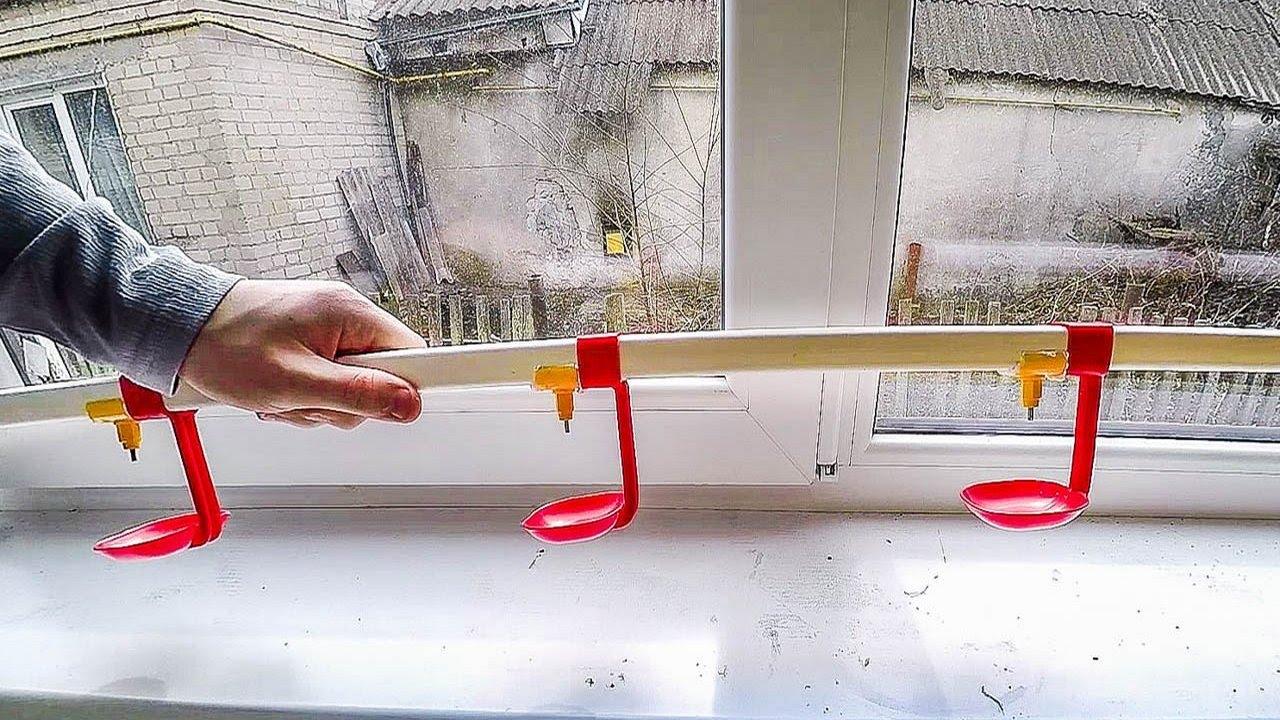Ниппельные поилки для кур своими руками фото фото 360