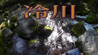 木曽2017・6・11冷川・藤沢川・浦川