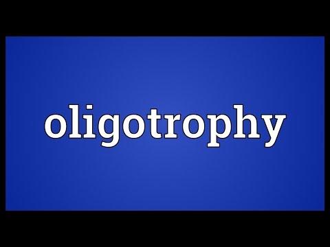 Header of oligotrophy