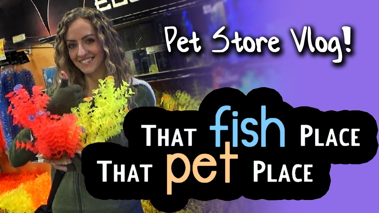 Pet store vlog that fish place that pet place youtube for The fish place