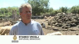 Život povratnika u zadarskom zaleđu - Al Jazeera Balkans