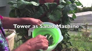 GT2 as a Salad Machine: Review of the Garden Tower 2 from David G. (California)
