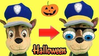 Halloween con paw patrol en español: Disfraces para Chase y la patrulla canina.Videos para niños