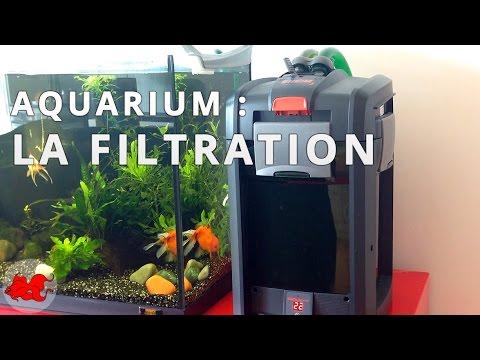 Aquarium la filtration youtube for Poisson rouge aquarium 10l