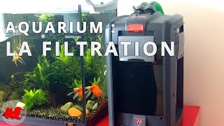 Aquarium : La filtration