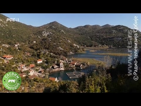 Sasvim prirodno: Skadarsko jezero, prvi deo