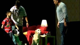 Isaac Wong (6 Years Old Boy) In Cesar Millan (dog Whisperer) Show, In Dog Training Video Singapore