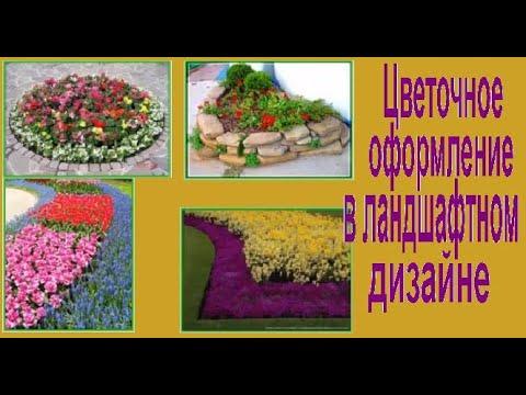 Цветочное оформление в ландшафтном дизайне участка