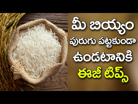 How to Store Your RICE Easily at Home Away From Insects? | Best Kitchen Remedies | VTube Telugu