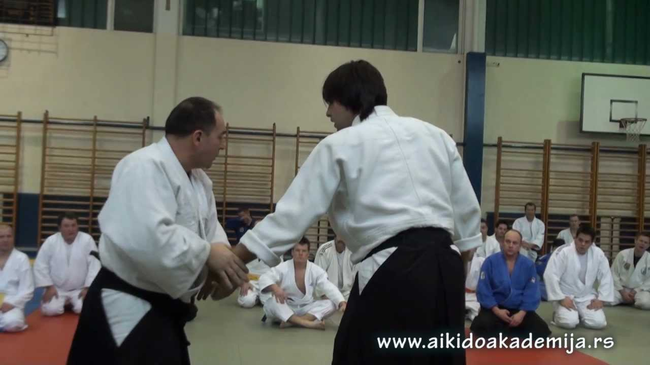 International aikido academy seminar in Ptuj, Slovenia