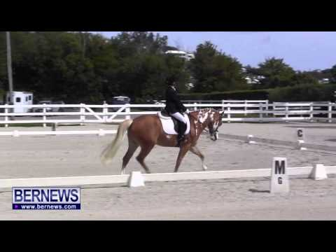 FEI Dressage Show, March 5 2014