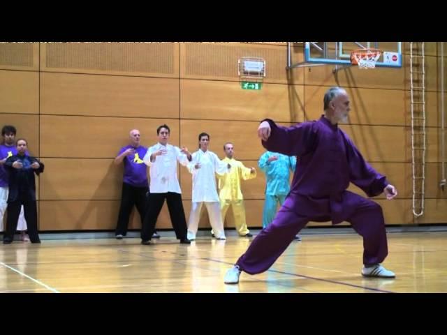Soft Power in Martial Arts - Seminar of Master Fu in Slovenia 2015