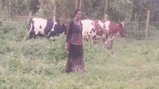 UCCFS Micro-insurance Success Story - Kemanzi Jacenta  (Shuuku SACCO)