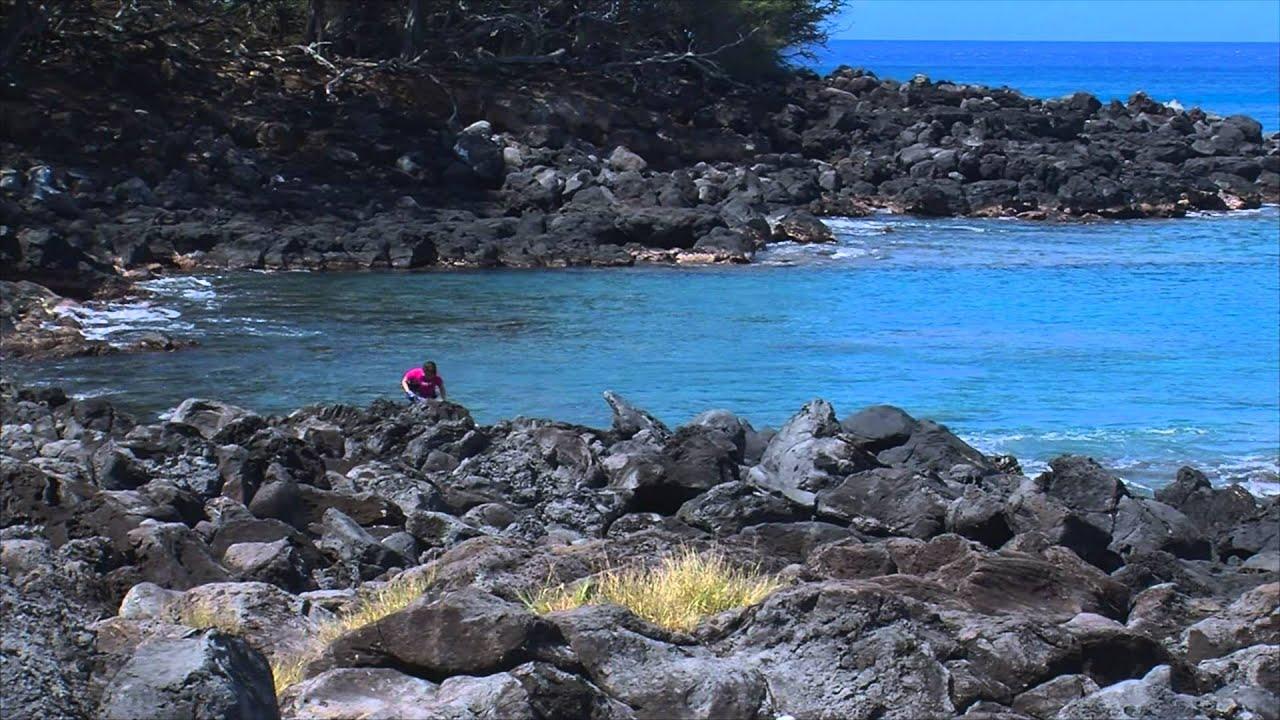 Kapaa Beach Park Super Dive Spot
