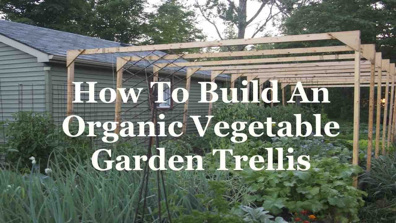 Organic Vegetable Garden Trellis   YouTube