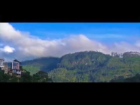 Misty Mountains - Bandarawela - Sri lanka 4k (Sword Digital)