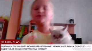1 видео со снежкой!!!! Как научить кошку тренировать без корма??? (Alise Wet)