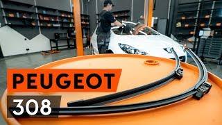 Come e quando cambiare Spazzola tergi anteriore e posteriore PEUGEOT 308 (4A_, 4C_): video tutorial