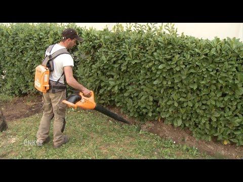 Création, entretien d espaces vert et jardins   VINCENNES VERT - YouTube 020b369cad3c