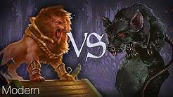 MtG Modern Gameplay - Cats VS Rats