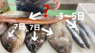 【熟成魚】9種類の魚の寝かせられる期間と熟成の仕方を解説