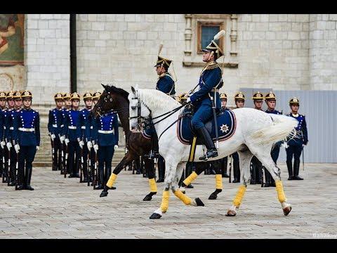Лошади президентского полка как их готовят к показам
