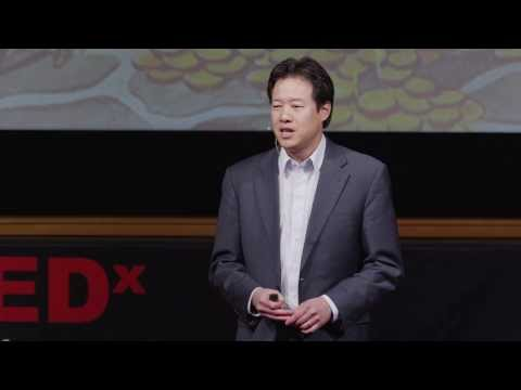 Why innovation is like a rainforest: Victor Hwang at TEDxUniversityofNevada