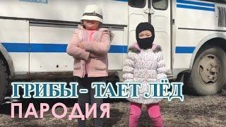 Грибы - Тает лед (ПАРОДИЯ АМИНКА ВИТАМИНКА и АДЕКА ПЕРСИК)