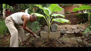 Swachh Desh