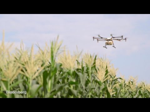 China's Farmers Take to the Sky
