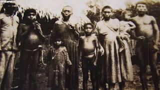Mamut zostanie wskrzeszony! 5 Wymarłych zwierząt, które wróciły do życia