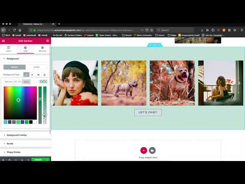 WordPress Tutorial: How to change accent colors on your website thumbnail