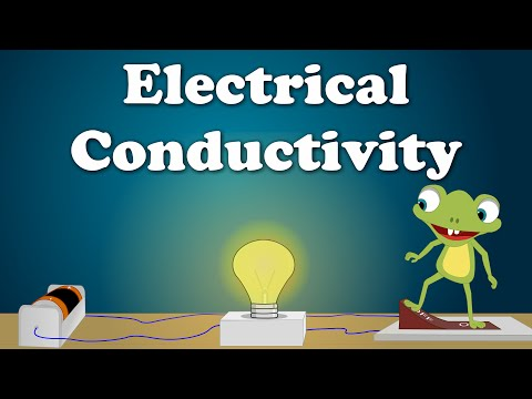 Electrical Conductivity | #aumsum