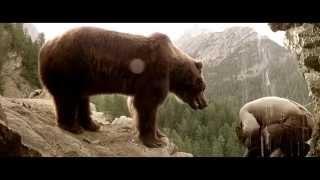 Медведь кадры из фильма