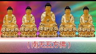释迦牟尼(梵語:शाक्यमुनि,Śākyamuni,意為《釋迦族之聖者」》),姓喬達摩,名悉達多(公元前623/563/480年—公元前543/483/400年,巴利...