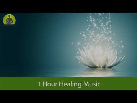 1 Hour Full Body Healing Music, Relaxing Music, Meditation Music, Sleep Music