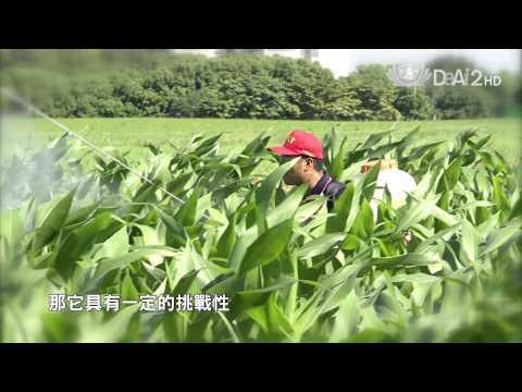【農夫與他的田】古坑農青傳奇們