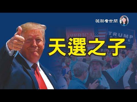 薇羽看世间:【第146期】圣经明示川普是「天选之子」,美国华人走向街头支持川普,隐居的阿米什人骑牛出来投票川普,民意即是天意。