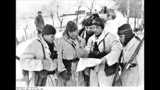 Использование трофейного оружия во Второй мировой войне