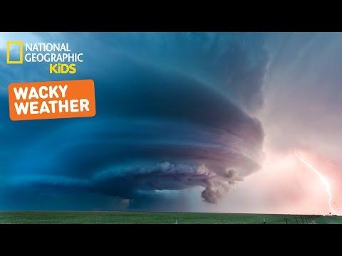 Wonder About Weather | Nat Geo Kids Weather Playlist