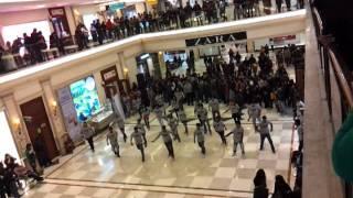 """Flash Mob @ DLF Promenade """"sab par DISH sawaar hai"""""""