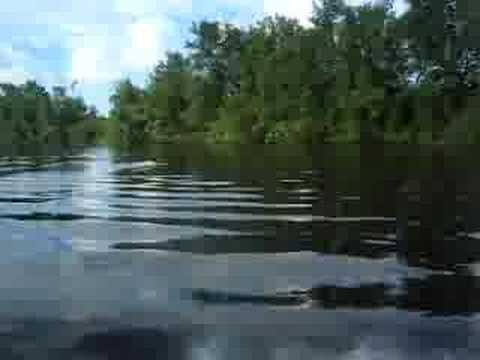 speedboat on Pomeroon River, Guyana