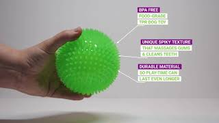 Gnawsome Spiky Squeak & Light Ball Dog Toys - Cleans Teeth and Promotes Healthy Gums, Colors vary